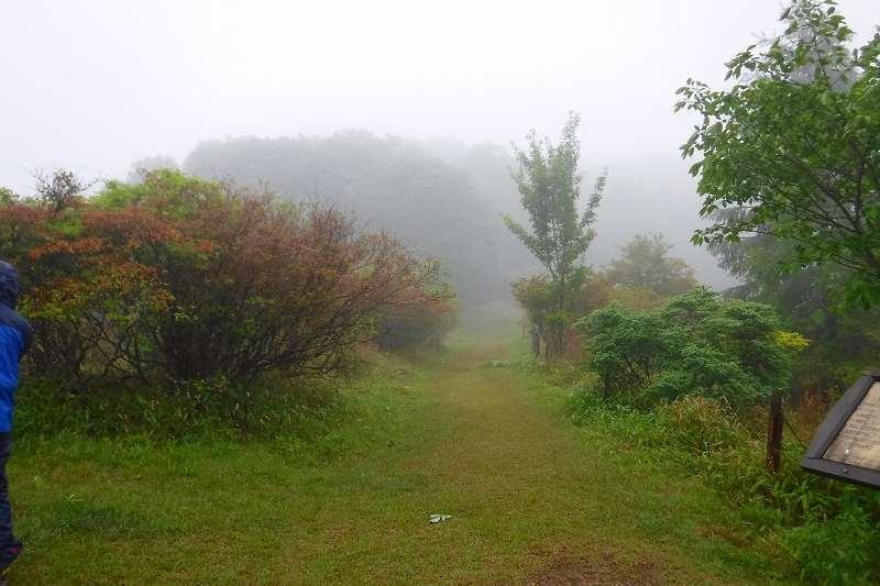 小雨の横根山 縦走。_d0000031_16291179.jpg