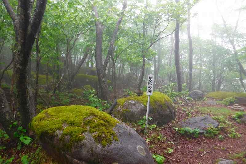 小雨の横根山 縦走。_d0000031_16320178.jpg