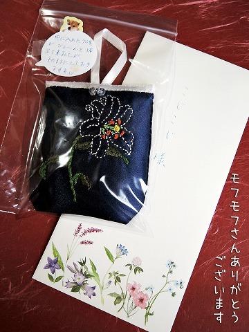 毛玉の女神さま_c0062832_14124193.jpg