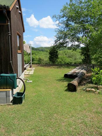 今年最初の芝刈り_d0130640_08261802.jpg
