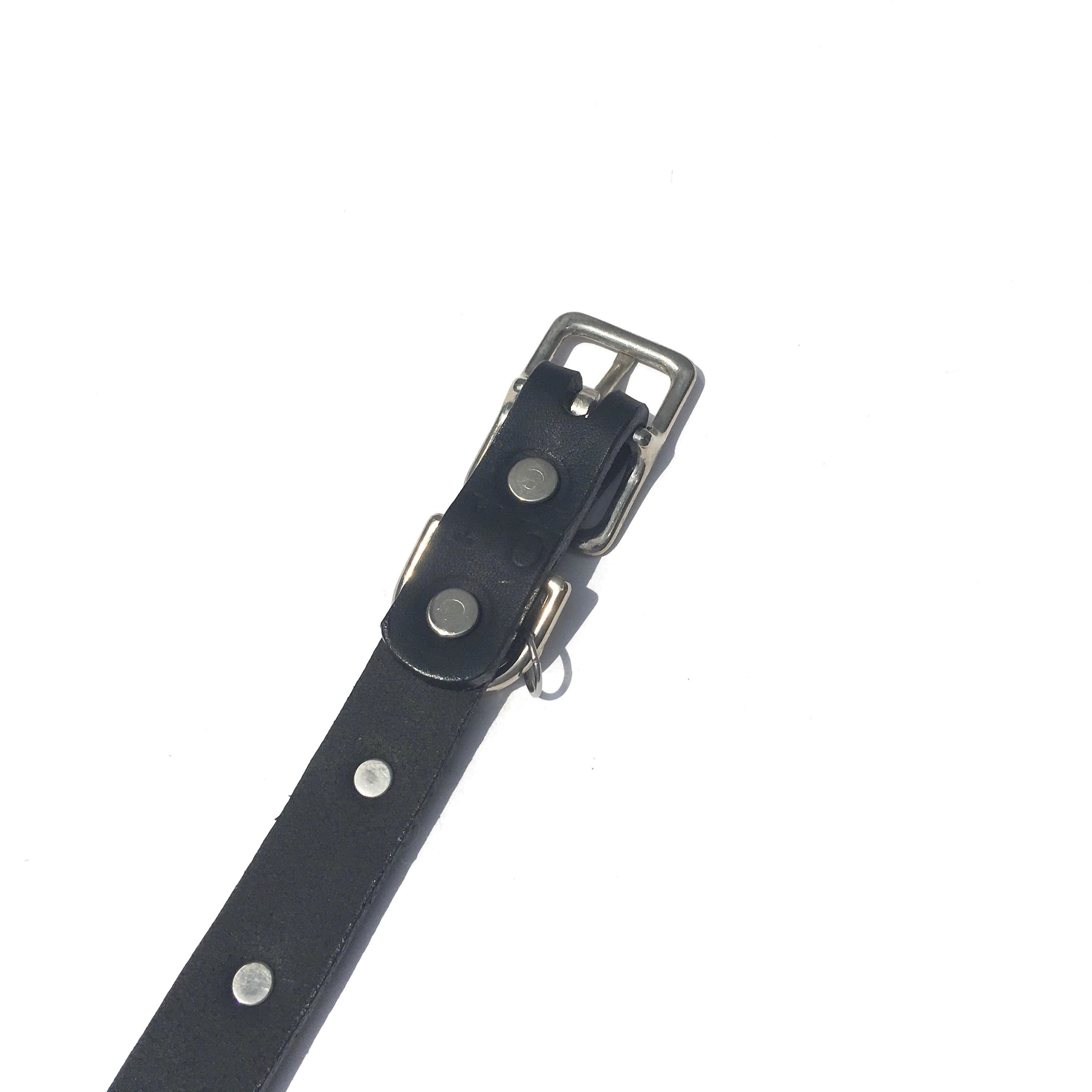 Dog La Star COLLAR ドグラ スター カラー 3/4インチ(2cm幅) 別注10インチ_d0217958_1213227.jpg