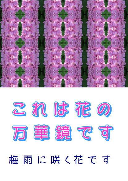 f0003174_14513631.jpg