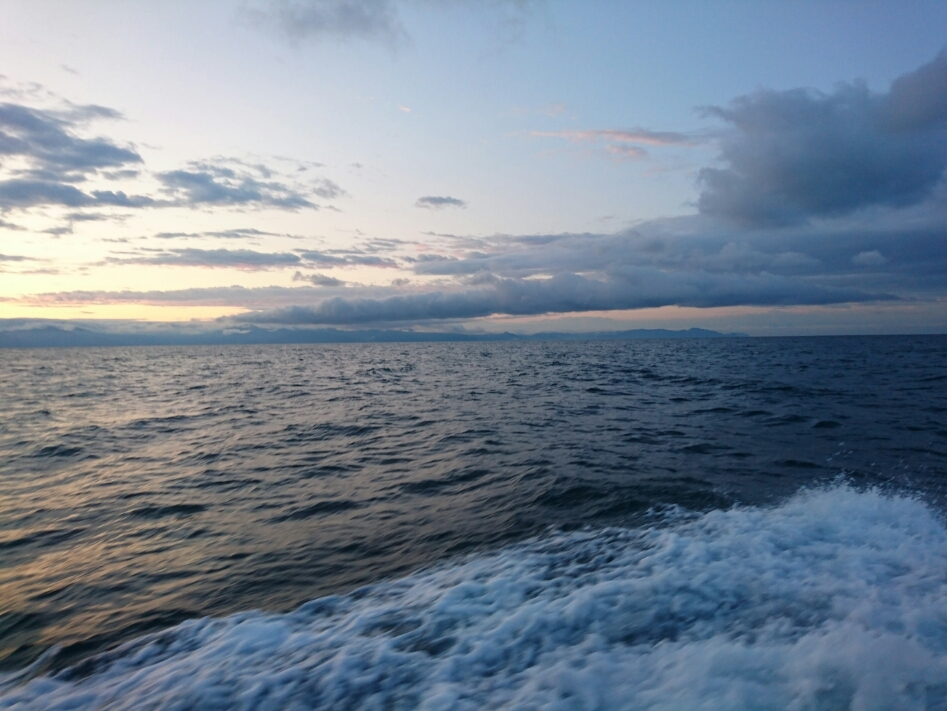 2019年  6月  海釣り_c0176183_18034466.jpg
