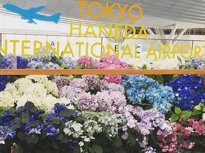 羽田空港をぶらり_f0231189_22480659.jpg