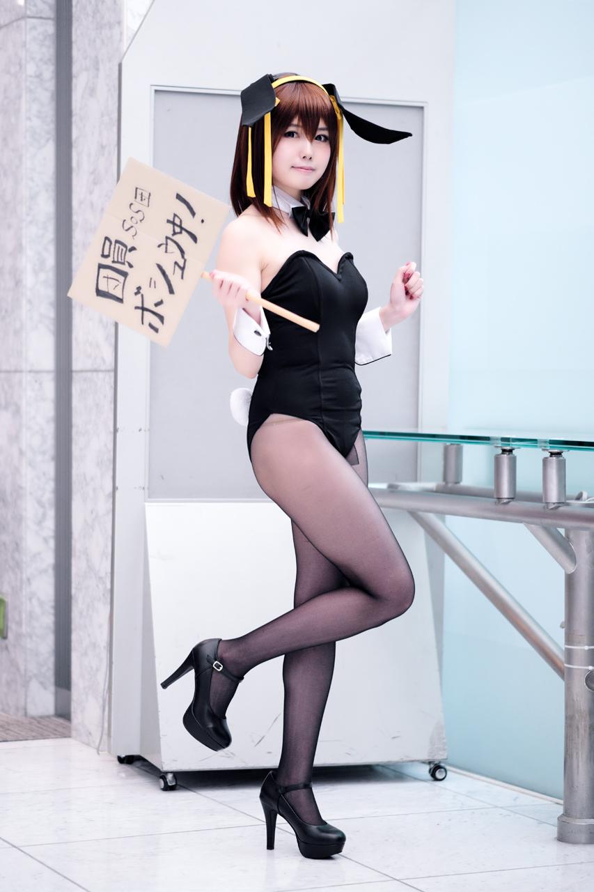 涼宮ハルヒ/しおんさん_c0119094_23291672.jpg