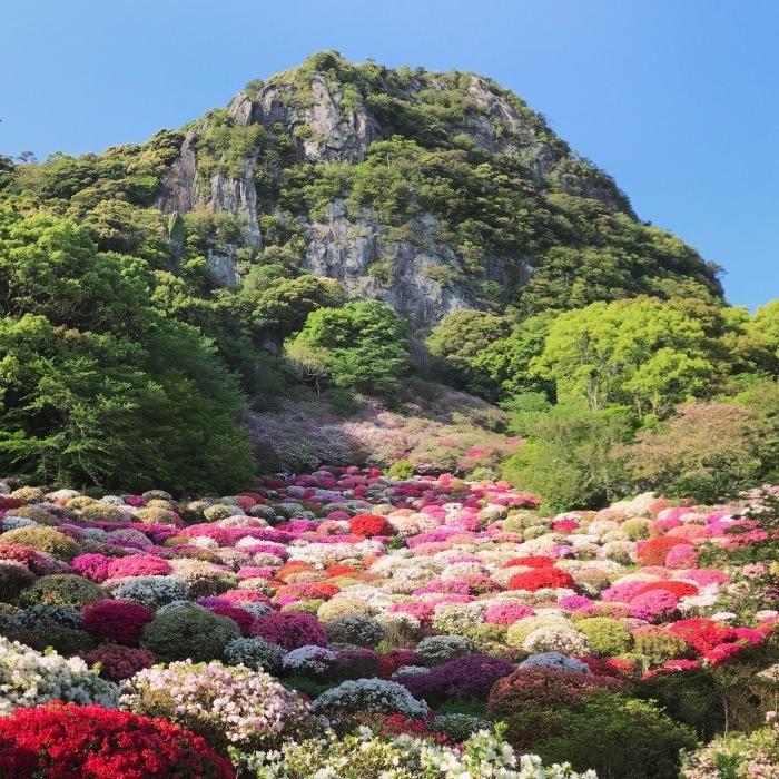 佐賀の魅力とサマー合宿の下見。_d0116009_02010063.jpg