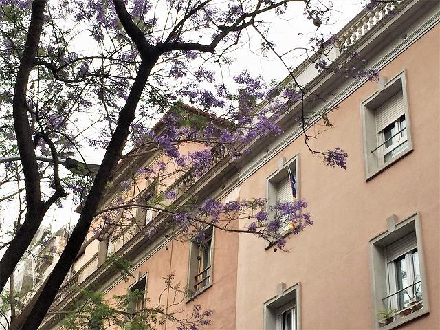 Caja de Ahorros de Sabadell の建物_b0064411_07403993.jpg