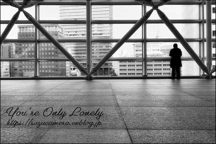 You\'re Only Lonely_f0100215_00154790.jpg