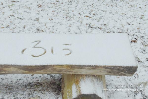今さらのなごり雪*_b0197639_20465585.jpg