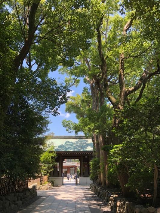 寒川神社へ「大祓い」_c0152341_08113455.jpg