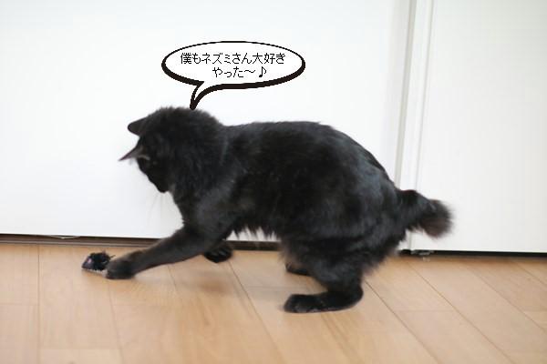 ネズミのおもちゃと里親様便り_e0151545_21233764.jpg