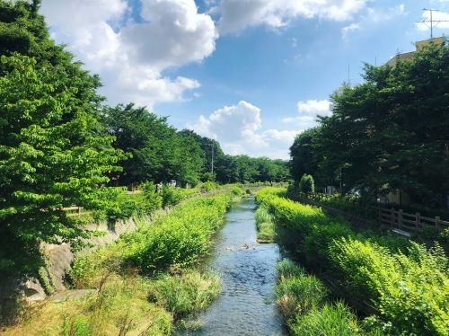 花咲ツアー2019、東京一時帰還編_e0071652_10221194.jpg