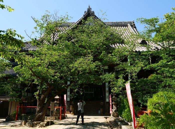 紀三井寺  2019-06-19 00:00      _b0093754_21205944.jpg