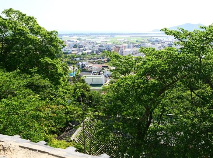 紀三井寺  2019-06-19 00:00      _b0093754_21215591.jpg