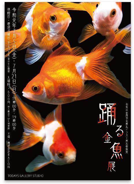 「踊る金魚展」に出品します(^^)_e0385587_21522029.jpg