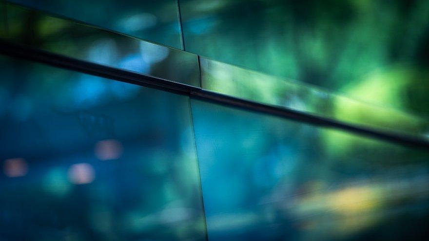 緑と戯れる光蜥蜴_d0353489_22183871.jpg