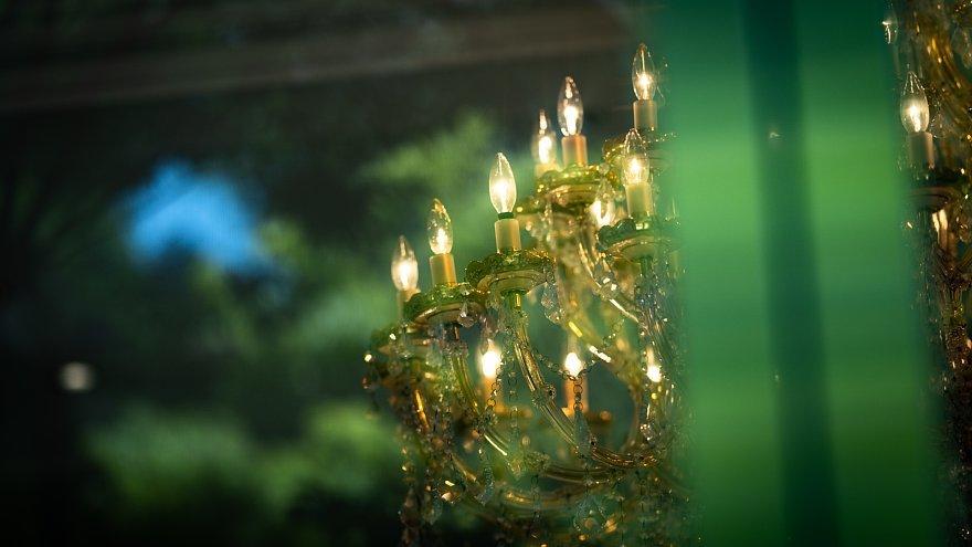 緑と戯れる光蜥蜴_d0353489_22185375.jpg