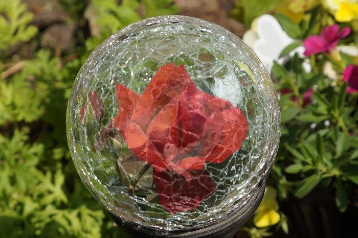 薔薇・・2_d0162994_05365051.jpg