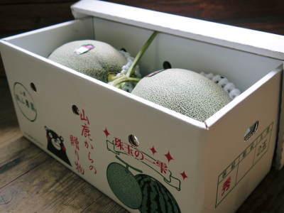 熊本産高級マスクメロン『肥後グリーン』 令和元年度の出荷スタート!大玉サイズも予約受付開始!_a0254656_16155572.jpg