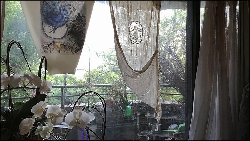トレビーノダアブルッツオ2001とバローロ1995のマグナム、それは土壌、風土、自然の恵み、造り手の情熱と愛の結晶です。_a0031363_01552948.jpg