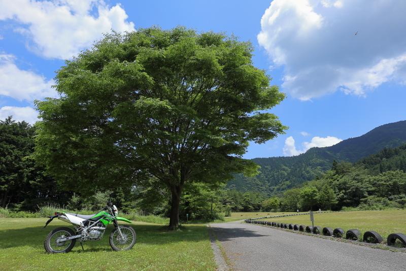 KLXで、中津明神山「天空の林道」へ その1_a0077663_08222110.jpg