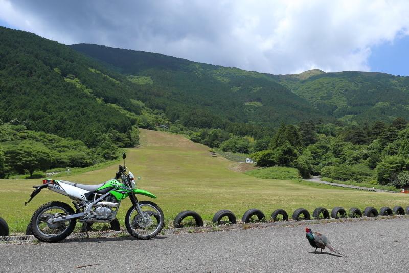 KLXで、中津明神山「天空の林道」へ その1_a0077663_08224480.jpg