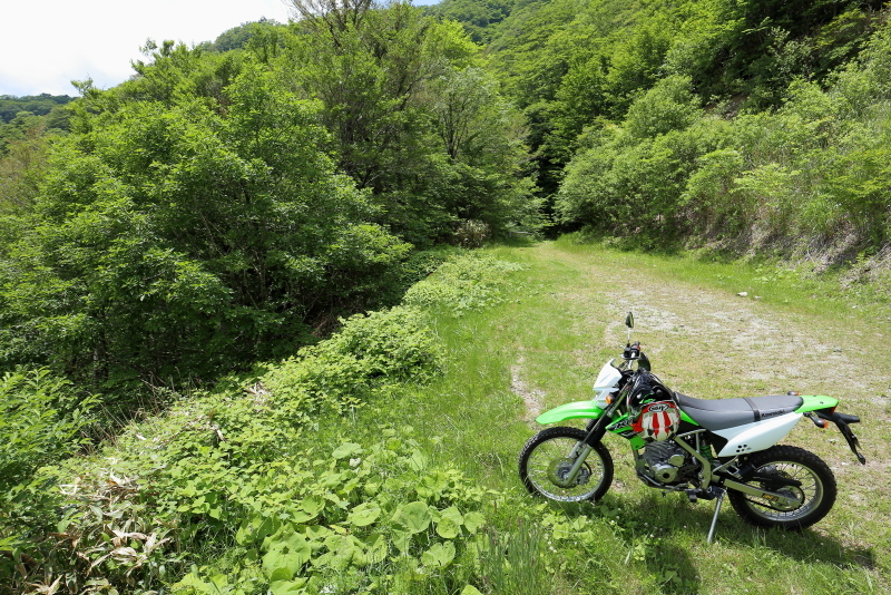 KLXで、中津明神山「天空の林道」へ その2_a0077663_08415537.jpg