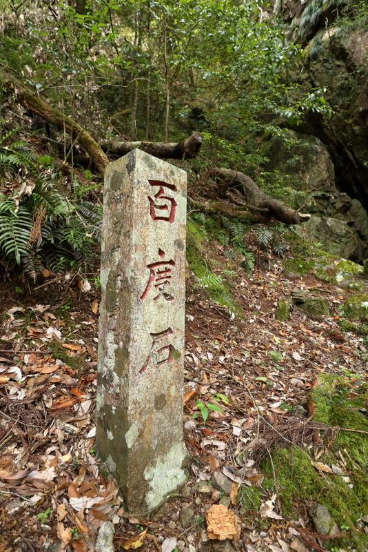 「鳥居杉」の後は、「瀬戸の滝」へ_a0077663_13045697.jpg
