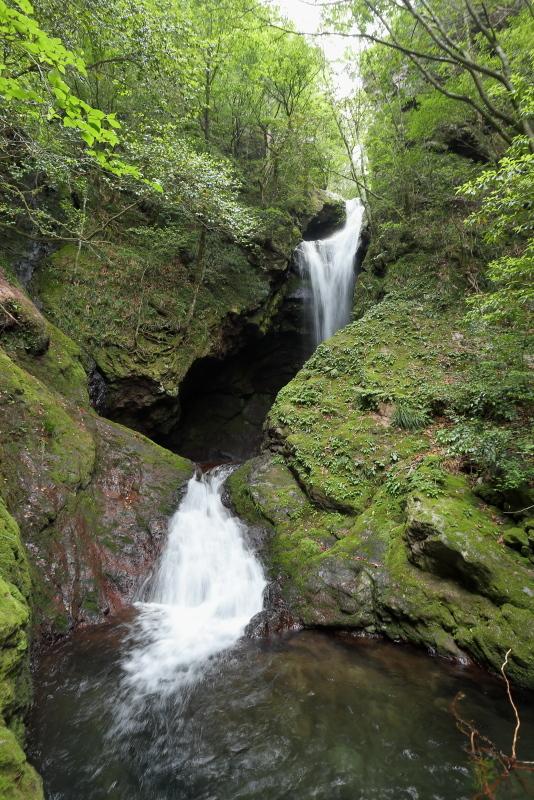 「鳥居杉」の後は、「瀬戸の滝」へ_a0077663_13120829.jpg