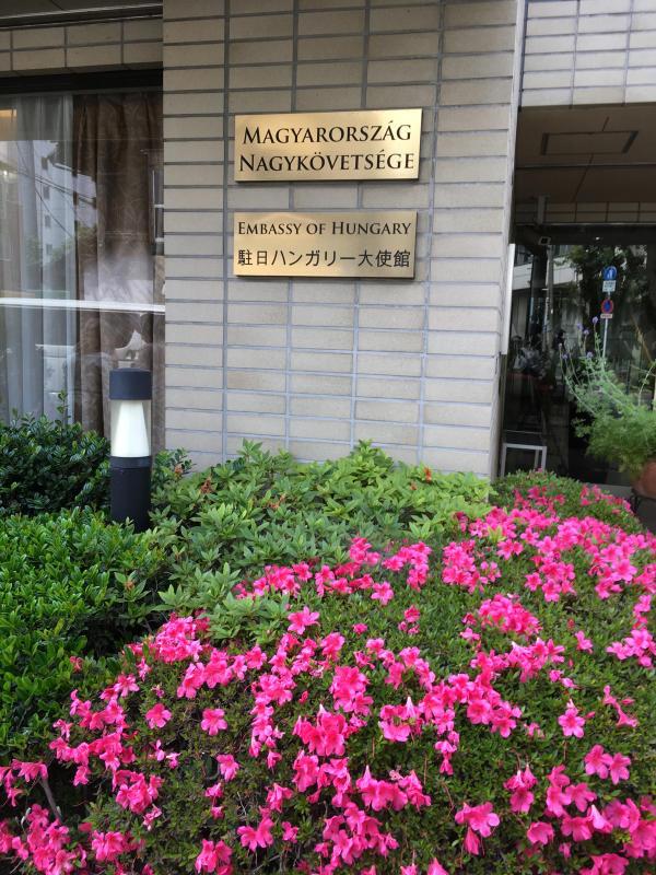 ハンガリー大使館公邸へ_c0195496_14263455.jpg