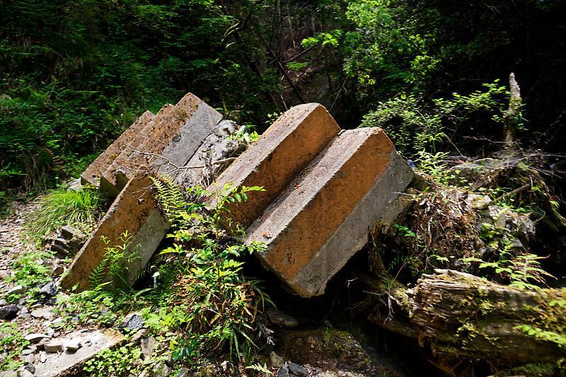 滝巡り@中川 菩提の滝。_f0032011_21544662.jpg