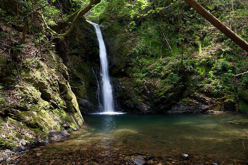 滝巡り@中川 菩提の滝。_f0032011_21544666.jpg