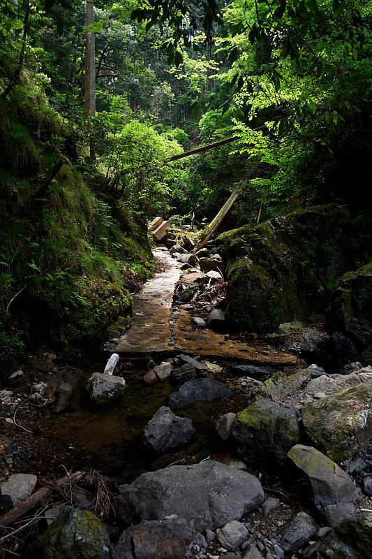 滝巡り@中川 菩提の滝。_f0032011_21544670.jpg