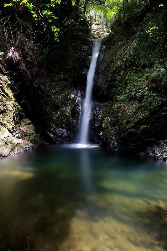 滝巡り@中川 菩提の滝。_f0032011_21544684.jpg