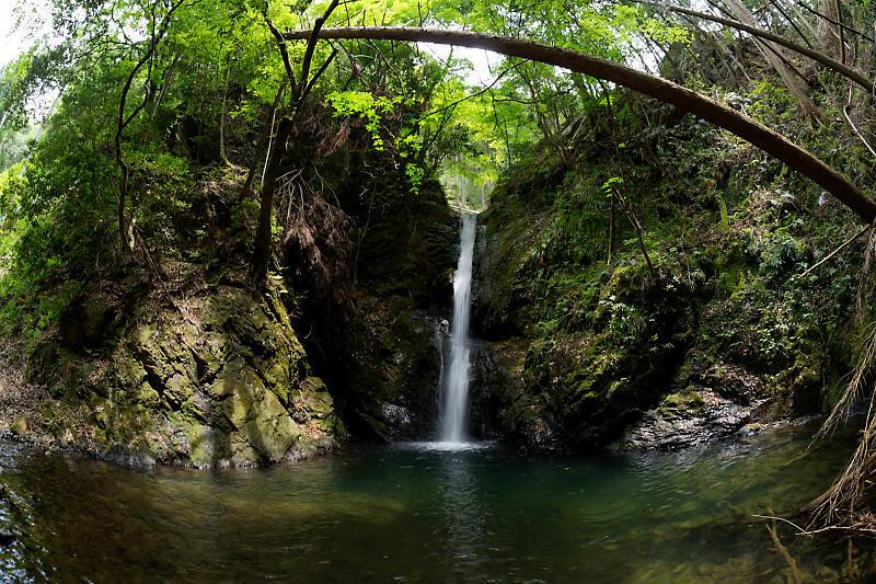 滝巡り@中川 菩提の滝。_f0032011_21544786.jpg