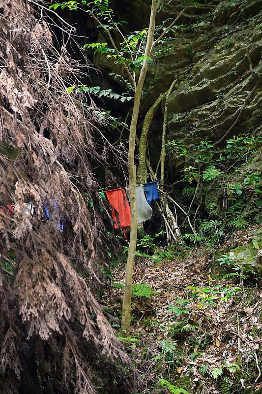 滝巡り@中川 菩提の滝。_f0032011_21593706.jpg
