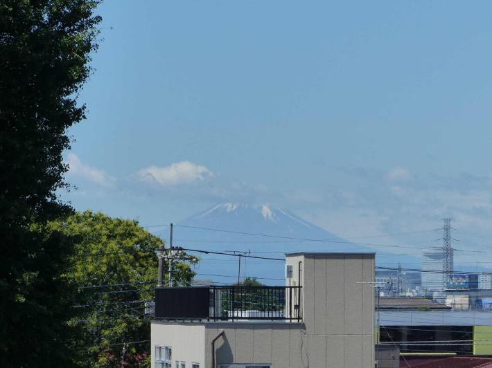 前日の雨と打って変わって_f0296312_22523834.jpg