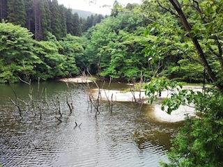 増水歓迎!揖斐春日・尾西谷_c0359615_18292777.jpg