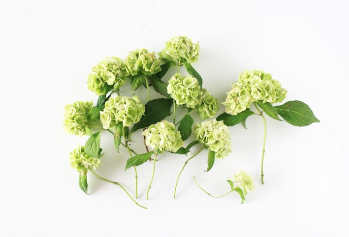 紫陽花のドライフラワーは手作りで♡_d0351435_08470939.jpg