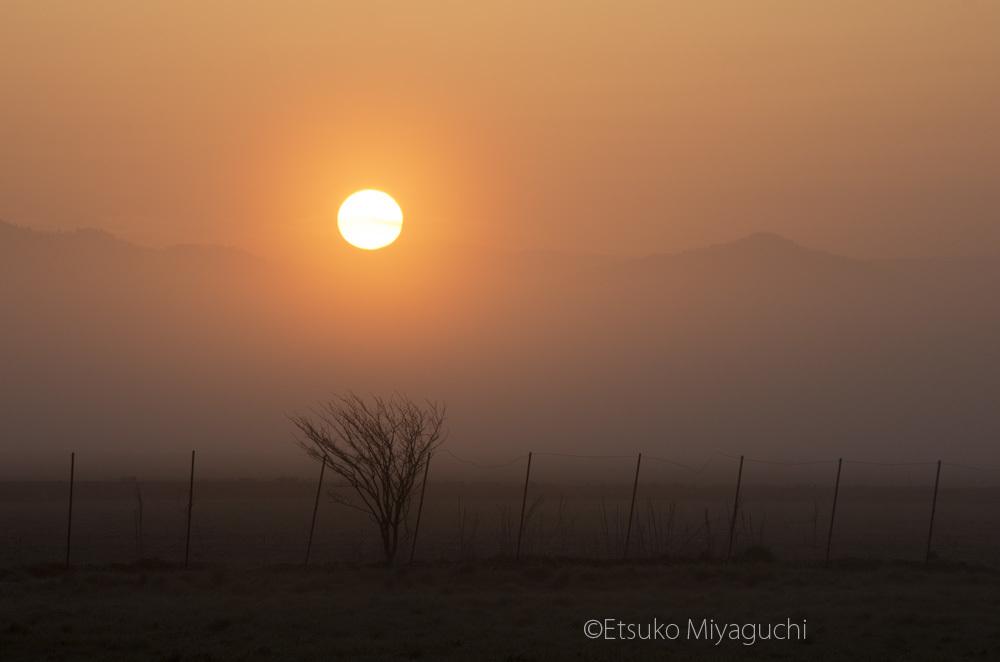 霧の夜明けに_f0152939_04401469.jpg