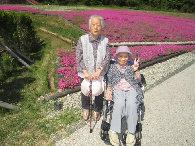 芝桜_e0142373_11192159.jpg