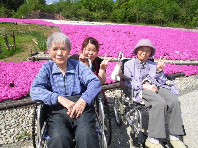 芝桜_e0142373_11194139.jpg