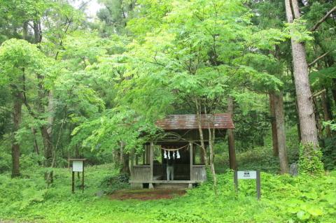 六月の早池峯神社(緑の季節到来)_f0075075_14233148.jpg