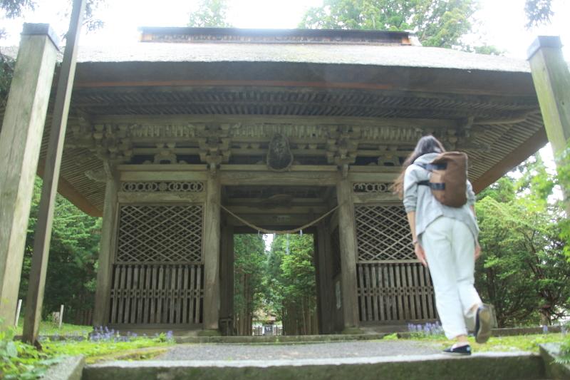 六月の早池峯神社(緑の季節到来)_f0075075_14255469.jpg