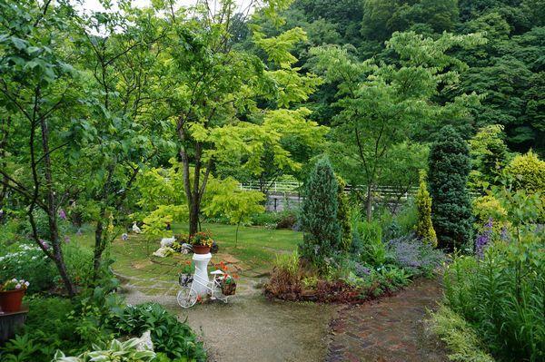 雨に濡れた庭は美しい_e0365880_09150256.jpg