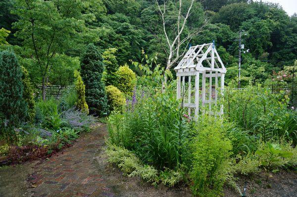 雨に濡れた庭は美しい_e0365880_09151573.jpg