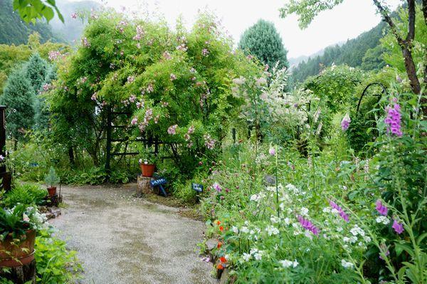 雨に濡れた庭は美しい_e0365880_09152521.jpg