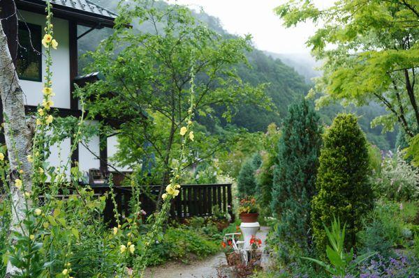 雨に濡れた庭は美しい_e0365880_09153875.jpg