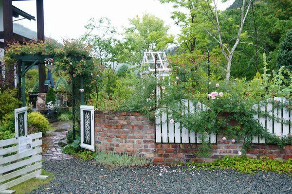 雨に濡れた庭は美しい_e0365880_09161822.jpg
