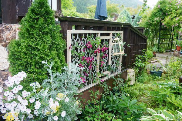 雨に濡れた庭は美しい_e0365880_09162766.jpg